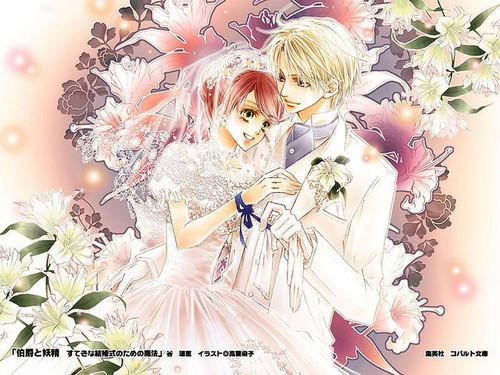 Cover from Light Novel