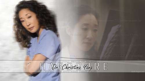Grey's Anatomy wallpaper probably with a fountain and a portrait titled Dr. Yang Wallpaper