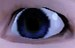 EYE SEE U!!!!!!!!!!!!!!!!!!!!!!! - the-sims-3 icon