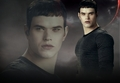 Emmet - twilight-series photo