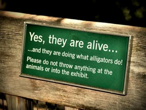 random images funny zoo signs wallpaper and background photos 15322702