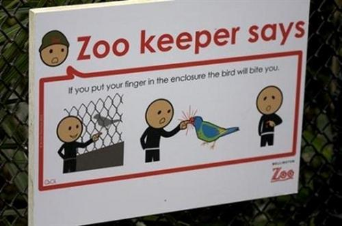 Random wallpaper probably with a chainlink fence titled Funny Zoo Signs