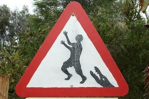 बिना सोचे समझे वॉलपेपर titled Funny Zoo Signs
