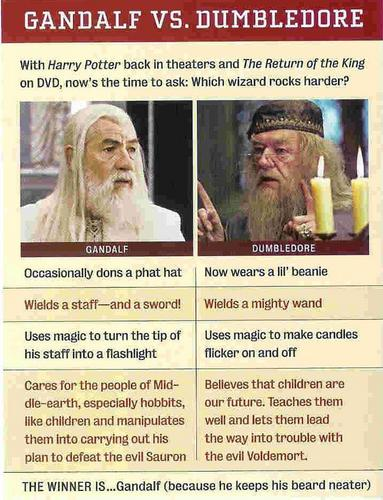 Harry Potter vs. The Lord of the Rings wallpaper entitled Gandalf vs Dumbledore
