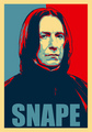 Greetings from me & Snape - yorkshire_rose photo