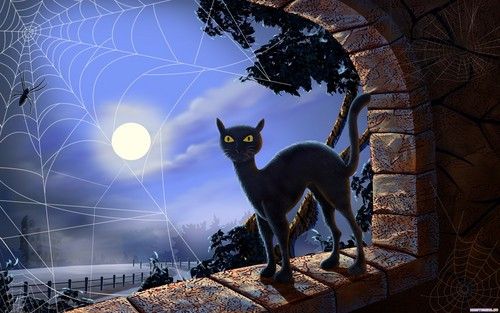 Halloween wallpaper possibly containing a cat, a kitten, and a panther entitled Halloween