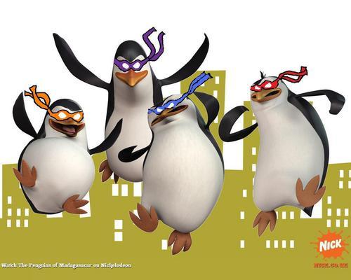 Its пингвин time!!!