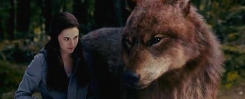 Jacob Black wallpaper entitled Jacob Black Eclipse