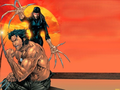 Lady Deathstrike and Wolverine