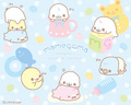 Mamegoma Baby Teacup Wallpaper - mamegoma wallpaper