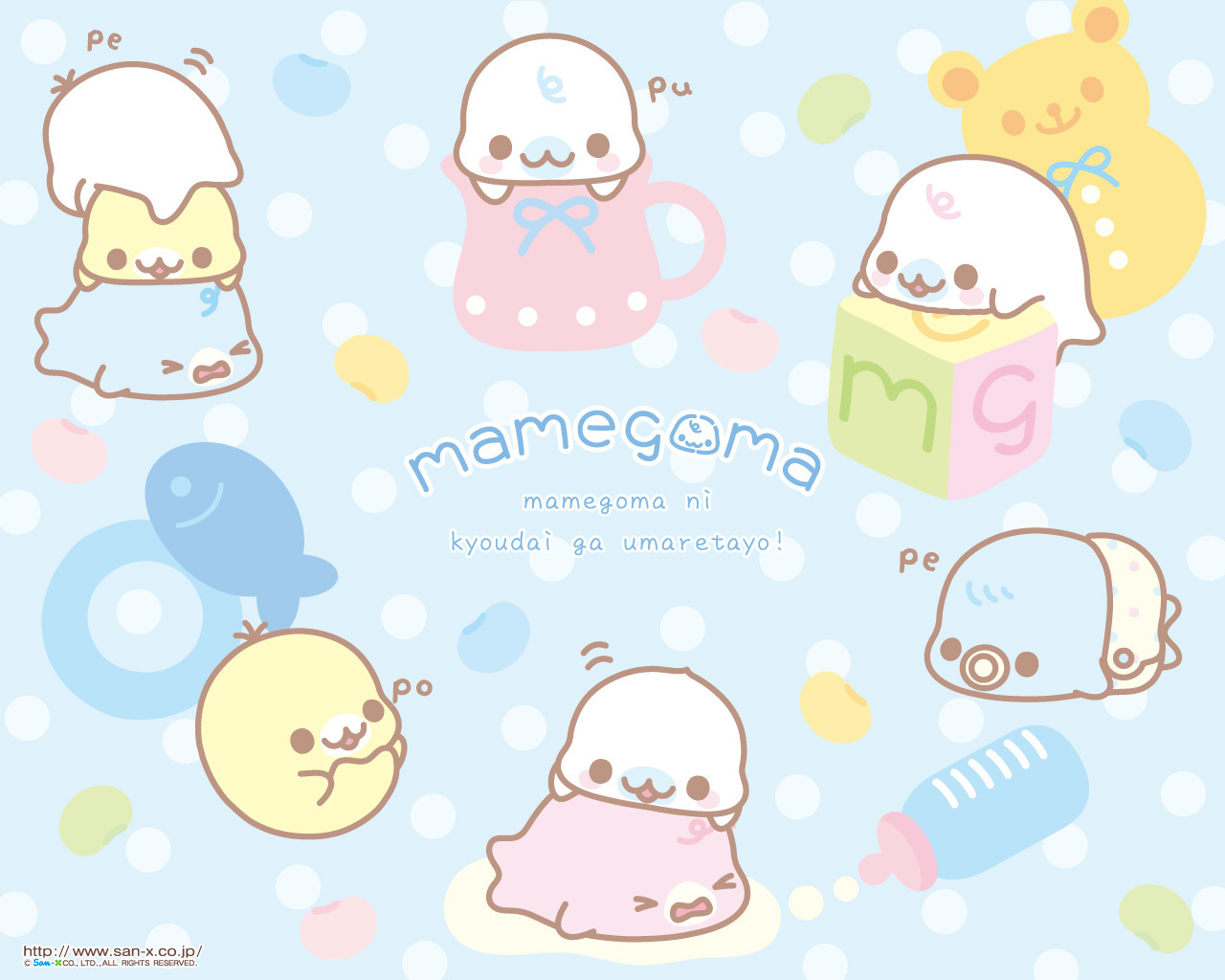 Mamegoma images Mamegoma Baby Teacup Wallpaper HD wallpaper and
