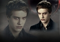 Riley - twilight-series photo