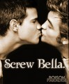 SCREW - twilight-series photo
