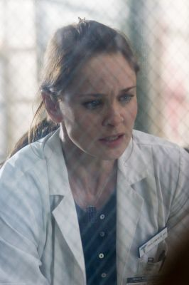 tv babaeng tauhan wolpeyper with a chainlink fence titled Sara Tancredi - Prison Break