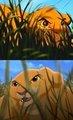 Simba/Kiara