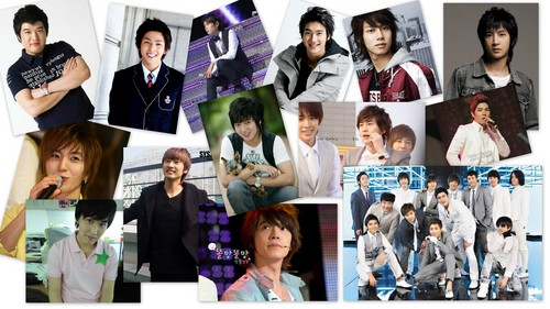 Super Junior 13 Forever!! - super-junior Wallpaper