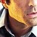 Zachary Quinto - zachary-quinto icon