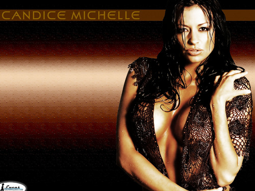 Candice Michelle Hintergrund titled candice michelle