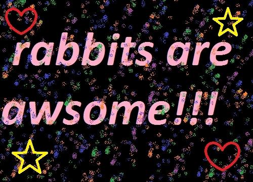rabbits are awsome!!!
