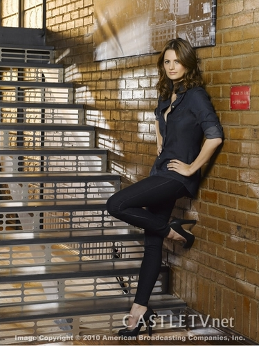 stana katic/det. kate beckett season 3