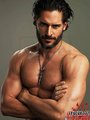 Alcide =] - alcide-herveaux photo