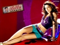 Billu Barber - bollywood wallpaper