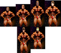 Eli and others as body builders!!!