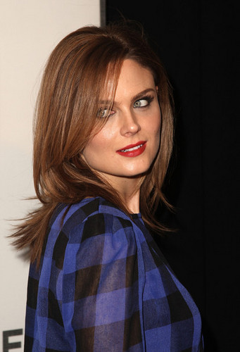 Emily Deschanel at the premiere of Serious Moonlight - deschanel Photo