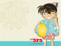 Metantei Conan - detective-conan wallpaper