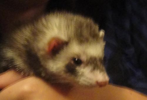 My cute baby <3