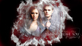 tv-couples - Stefan & Elena wallpaper