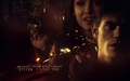 Stefan & Elena - tv-couples wallpaper