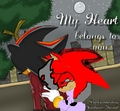 for shadowsonlygirl - shadow-the-hedgehog photo