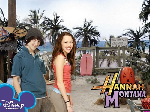 hannah montana season 1 wallpaer 13