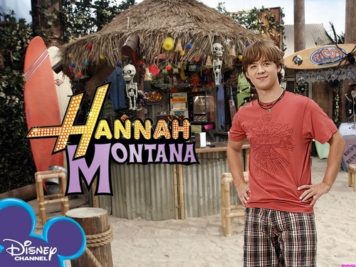hannah montana season 1 wallpaer 5