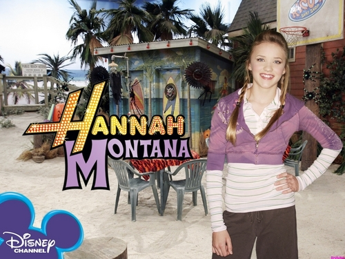 hannah montana season 1 wallpaer 6