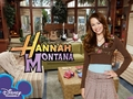hannah montana season 1 wallpaper 2