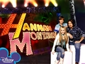 hannah montana season 1 wallpaper 9