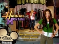 hannah montana season 2 wallpaper 25