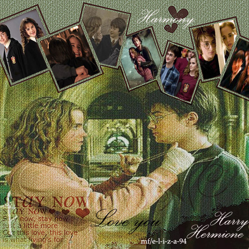 Harry and Hermione wolpeyper containing an electric refrigerator, a refrigerator, and anime titled hary and hermione