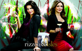 rizzoli-and-isles - wallpaper wallpaper