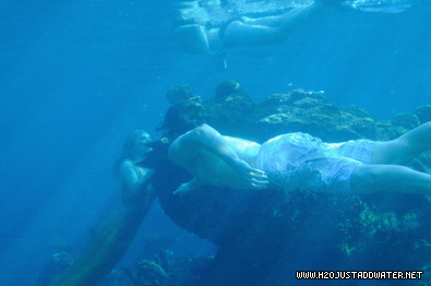 wella swimming 2