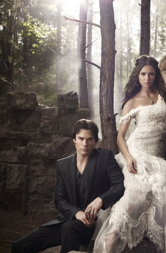 Damon & Elena wallpaper containing a bridesmaid, a gown, and a dinner dress called Damon & Elena..