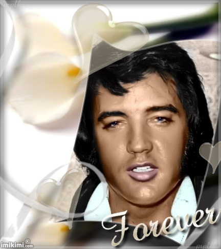 埃尔维斯·普雷斯利 壁纸 containing a portrait entitled Elvis