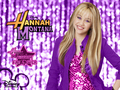 Hannah Montana Season 1 Purple Background wallpaper as a part of 100 days of hannah by dj!!!