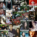 Happy Birthday Bella!!!! - bella-swan photo