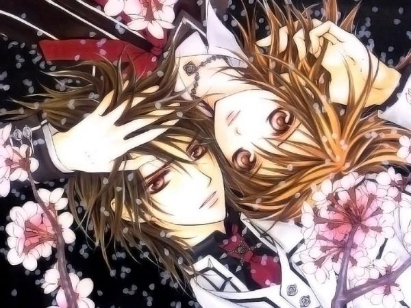 Vampire Knight Yuki and Kaname