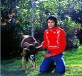 More of the most Beautiful Human Being that EVER existed - michael-jackson photo