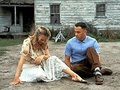 Not-enough-rocks-forrest-gump - forrest-gump photo