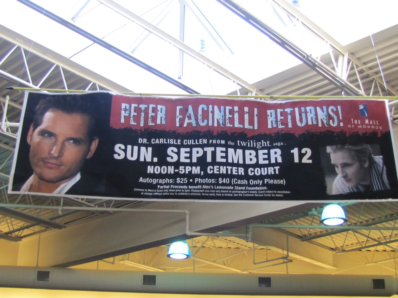 Peter Facinelli in Michigan